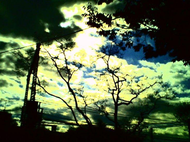 デジタルハリネズミ 3.0 - 飛ぶ夢をしばらく見ない -  空  雲  樹  駅  途中下車  夕暮れ時  初冬  - Camera Talk -