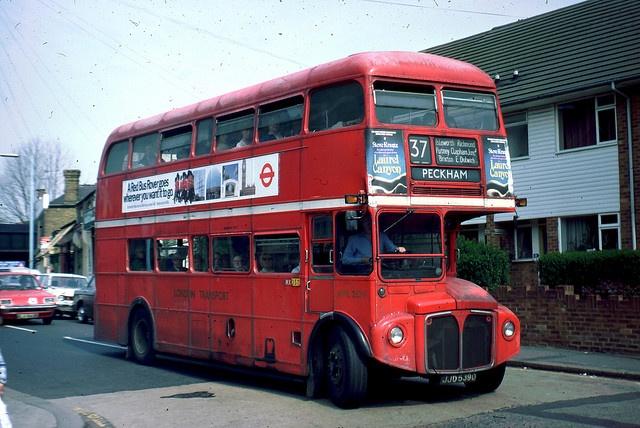 Taking the 37 to Peckham...