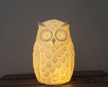 What a hoot! Bone China Owl Lamp. The It Kit