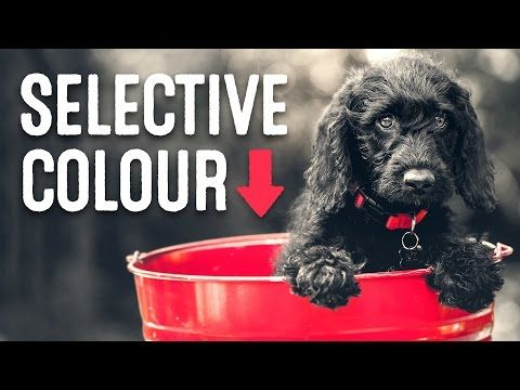 Video Tutorial: Selective Color Photo Effect in Photoshop