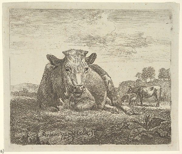 Recumbent Cow, From Different