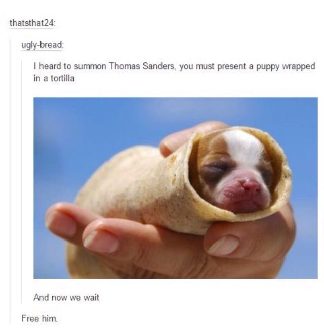 Thomas Sanders. For those of you that didn't know, thatsthat24 is Thomas. Though, I bet most of you did know...