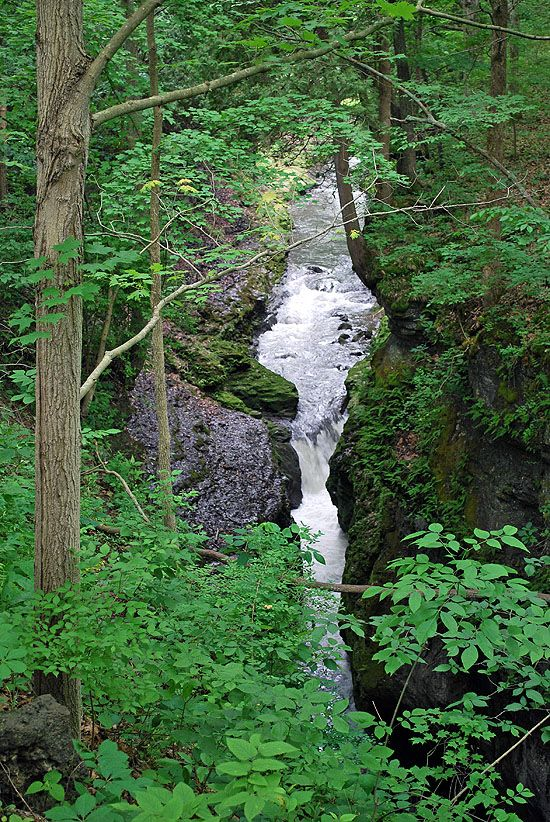 Clifton Gorge in Yellow Springs, Ohio, a then nearly secret site I first encountered as a Boy Scout on my first backpacking trip.
