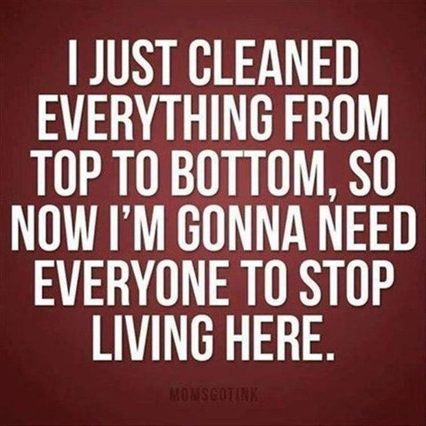 """I just cleaned everything from top to bottom, so now I'm gonna need everyone to stop living here."""