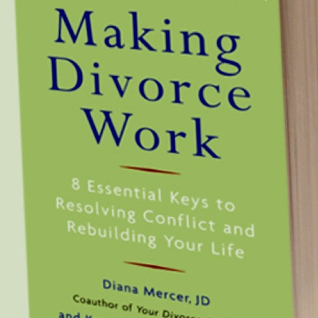 Parenting divorce book 28 images 36 best children s books that deal with divorce images on - Divorce shoppe ...