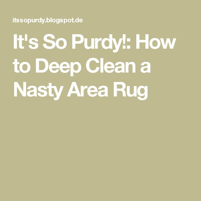 It's So Purdy!: How to Deep Clean a Nasty Area Rug