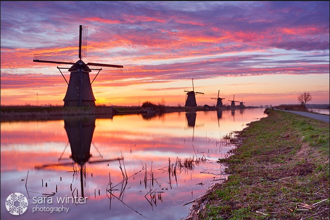 windmills in Holland | 20 more photos to see