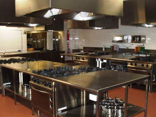 Concept a commercial kitchen in a residential space for Kitchen appliance layout ideas