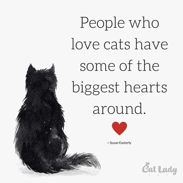 My heart is bigger BECAUSE I have cats. They changed/saved me.