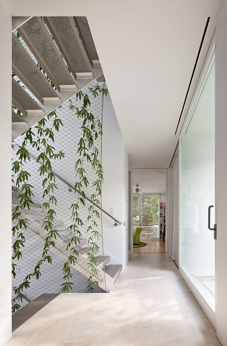 Love the plants climbing up the wire dividing wall Chevy Chase Home by Meditch Murphey Architects