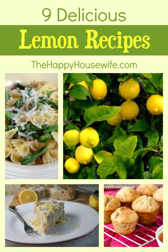 These 9 delicious lemon recipes are sure to delight your taste buds this summer! | The Happy Housewife