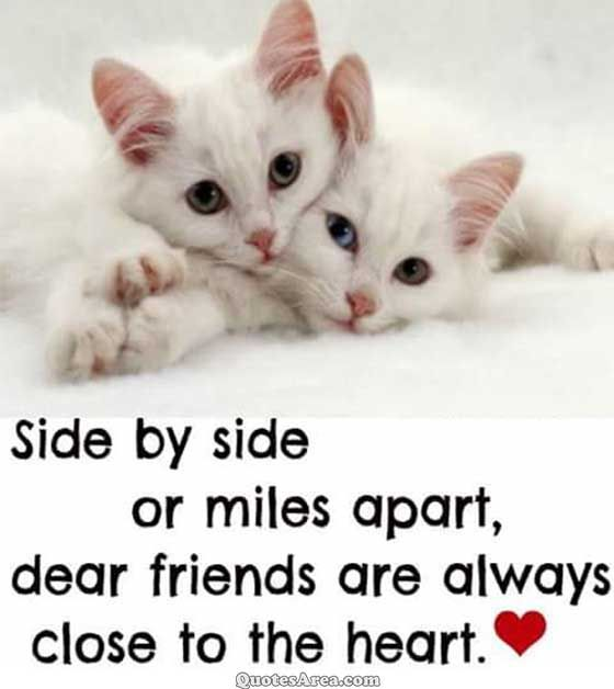 Sides by side or miles apart, dear friends are always close to the heart. #quote