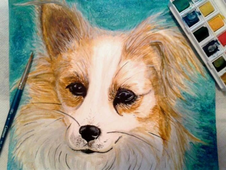 Painting of my dog Cici xX