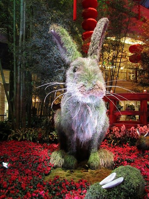 Awesome Chinese New Year, year of the rabbit (2011) seasonal flower displays at The Bellagio Resort Conservatory in Las Vegas.