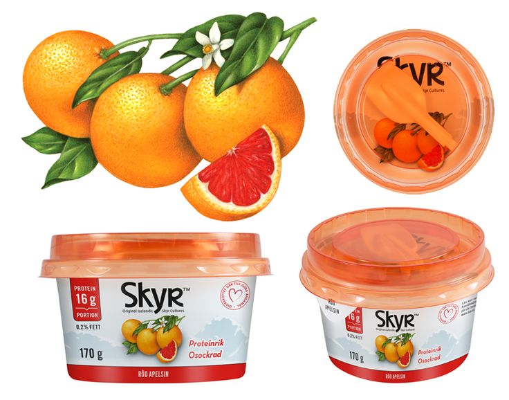 Blood Orange Botanical Illustration Used On Packaging For Skyr Yogurt