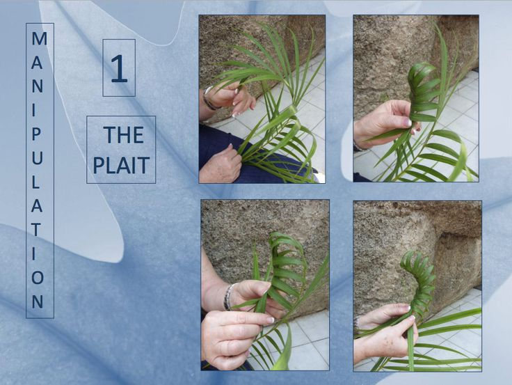 23 best floral art manipulations images on pinterest flower rh pinterest com Manual Therapy Manual Manipulation of Shoulder