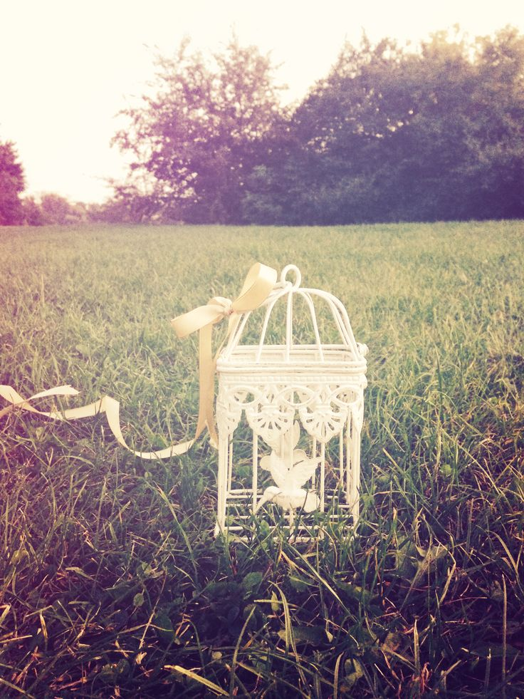www.facebook.com/thewonderwoodstore candles, candlestick, cage, decor, nature, bird, vintage cage, provence