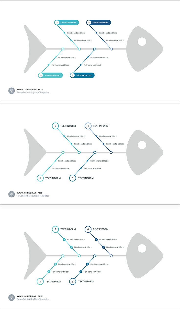7 best business diagram images on pinterest role models template easy to edit fish bone diagram keynote for iwork 2 click customization and aspect ratio free support more templates ccuart Choice Image
