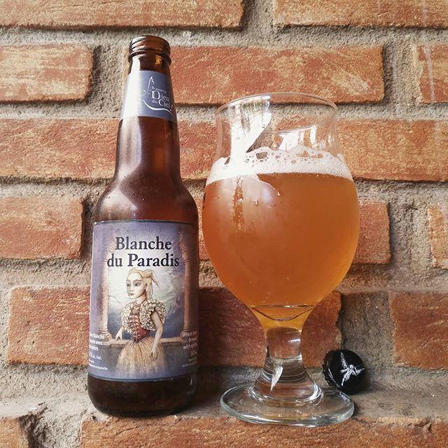 Essa é a Blanche du Paradis - Branco do Paraíso na língua do Mussum... (Desculpe! Foi mais forte que eu!) Blanche du Paradis é uma Witbier da cervejaria Dieu du Ciel elaborada como manda o figurino: com sementes de coentro e cascas de laranja. Essa cerveja do estilo tipicamente belga é uma das primeiras a serem produzidas pela cervejariacanadense e está em produção desde 1999.  É uma cerveja de coloração amarela levemente turva com espuma branca deboa formação e estabilidade.No aroma notas…