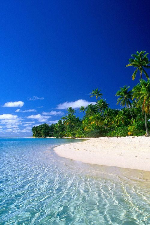 Dr rosal virgin islands