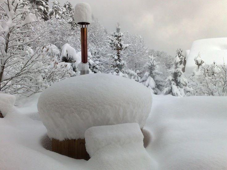 IL parait qu'il va neiger.... www.inviridis.fr