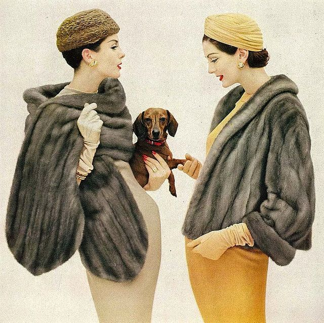 1950s Emba mink fur coats vintage ad Anne St Marie & Carmen oh & ah over a cute Doxie