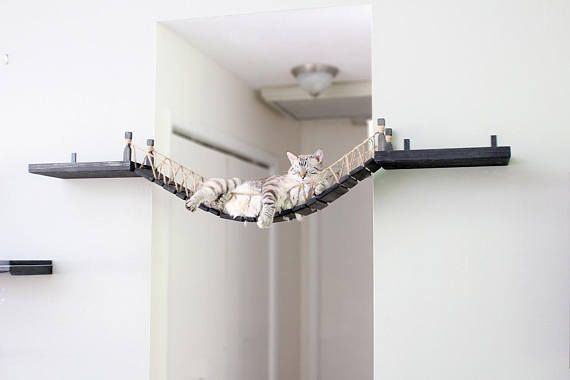 Roped Cat Bridge – Free US Shipping