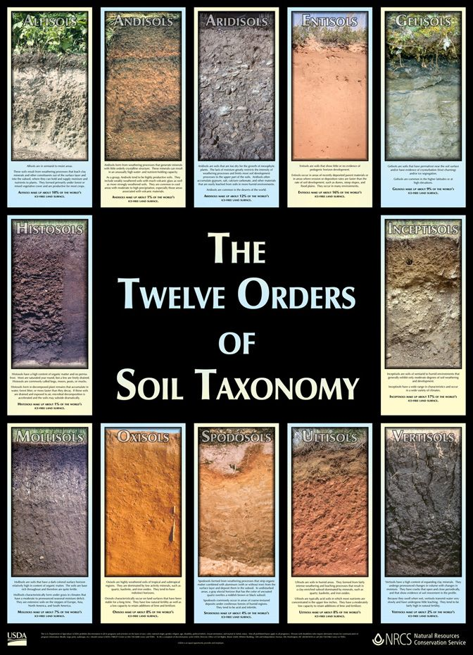 """The Twelve Orders of Soil Taxonomy"" http://www.nrcs.usda.gov/wps/portal/nrcs/detail/soils/edu/?cid=nrcs142p2_053588"
