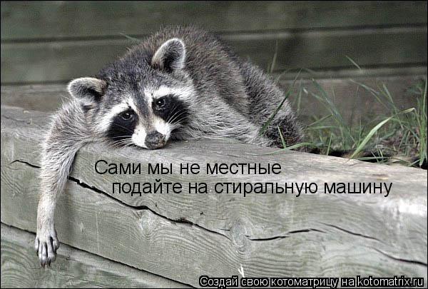 )))))))))))