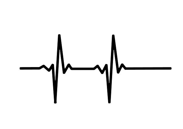Free Image on Pixabay - Heart Rate, Pulse, Live, Line, Wave