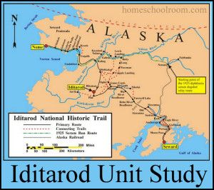Iditarod Unit Study from HomeSchoolroom.com