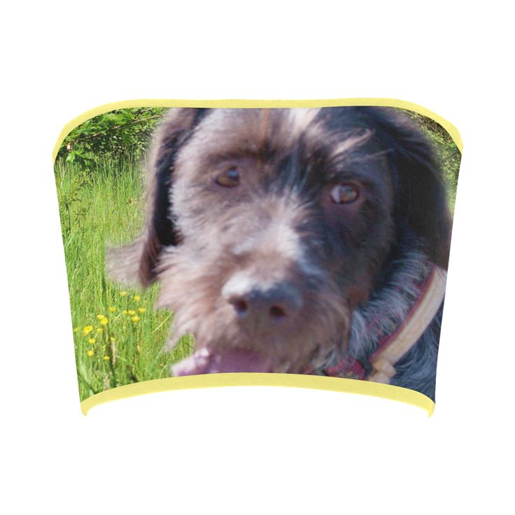 Dog and Flowers Bandeau Top. FREE Returns. #artsadd #tops #dogs