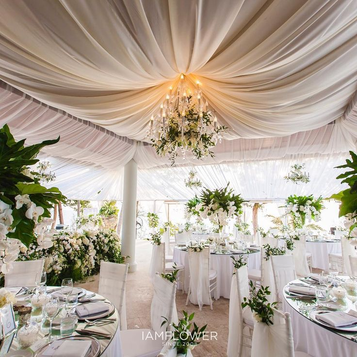 Ceiling Draping And Chandelier With Natural Green Wedding