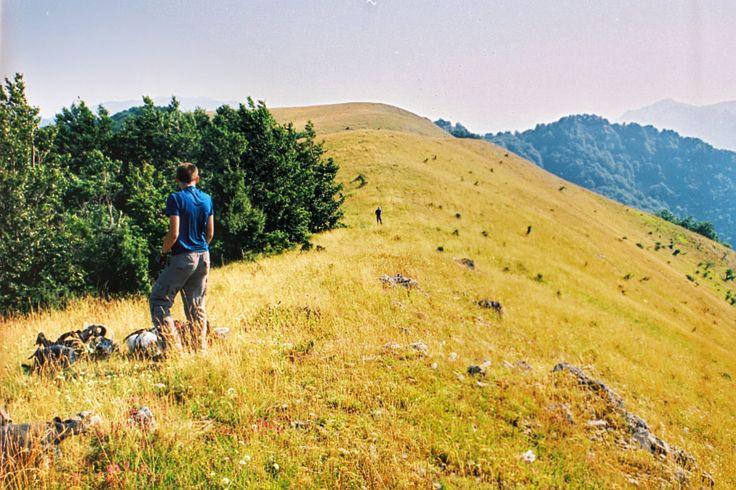 Poiana Cicilovete- widok na szczyt