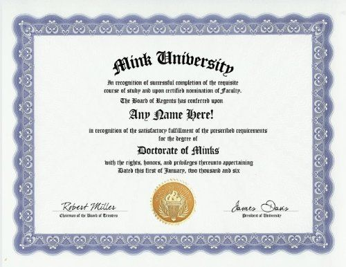 Mink Degree: Custom Gag Diploma Doctorate Certificate (Funny Customized Joke Gift - Novelty Item) by GD Novelty Items. $13.99. One customized novelty certificate (8.5 x 11 inch) printed on premium certificate paper with official border. Includes embossed Gold Seal on certificate. Custom produced with your own personalized information: Any name and any date you choose.