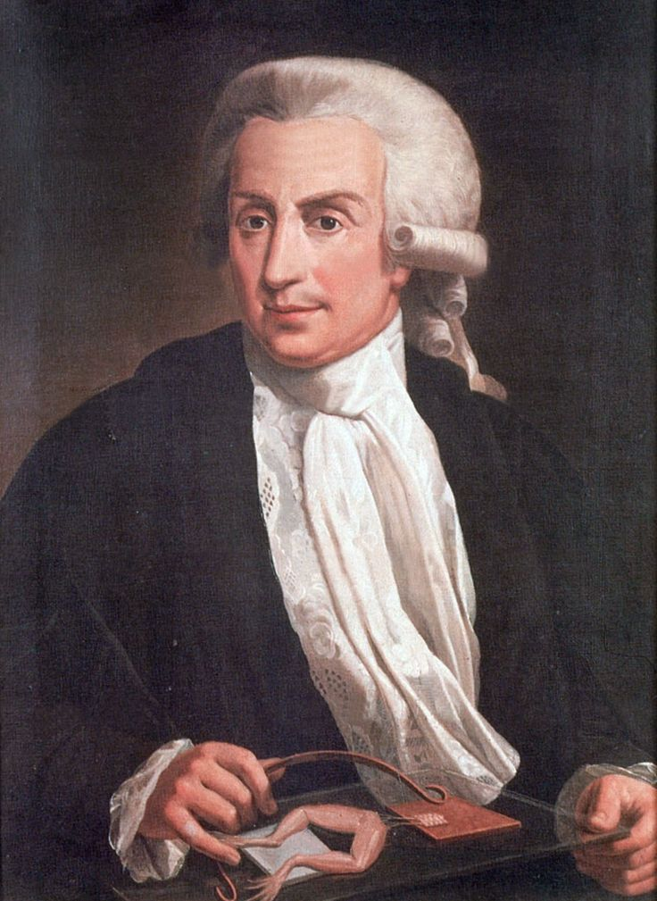Luigi Galvani (September 9, 1737 – December 4, 1798) was an Italian physician, physicist and philosopher who had also studied medicine and had practised as a doctor. In 1771, he discovered that the muscles of a dead frogs legs twitched when struck by a spark. This was one of the first forays into the study of bioelectricity, a field that still today studies the electrical patterns and signals of the nervous system.