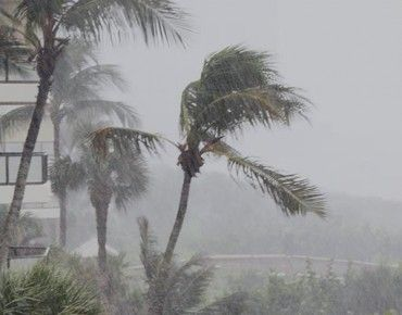 Hurricane season 2016, part 1: Your insurance policy and emergency plan