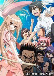 Seto no Hanayome Online - AnimeFLV