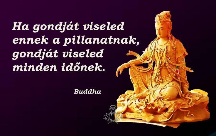 Buddha idézet a pillanat kihasználásáról. A kép forrása: Lótuszlélek