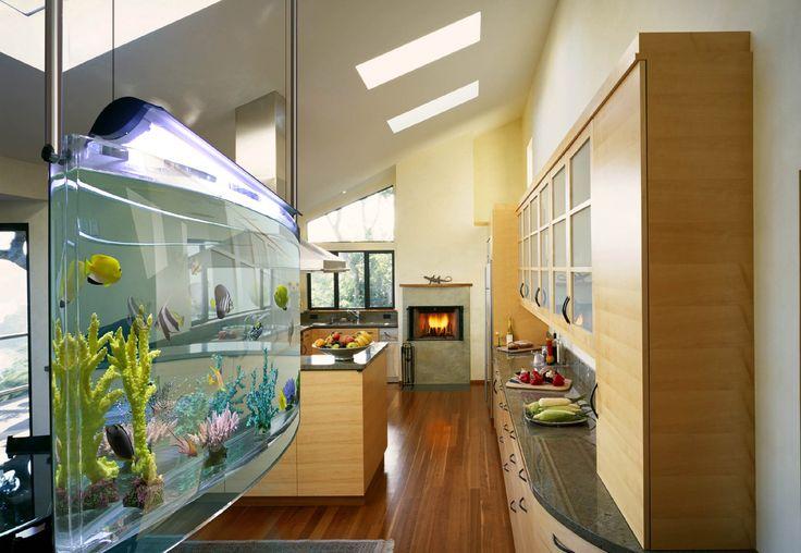 Unique Aquarium Design Ideas ~ http://www.lookmyhomes.com/pick-one-of-unique-aquariums-design-ideas-for-your-fish/