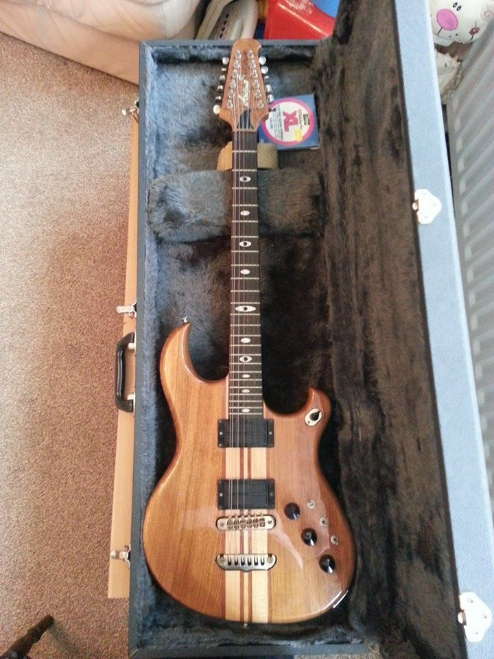 Aria Pro II RS 800 12 string Electric used by Wayne Hussey