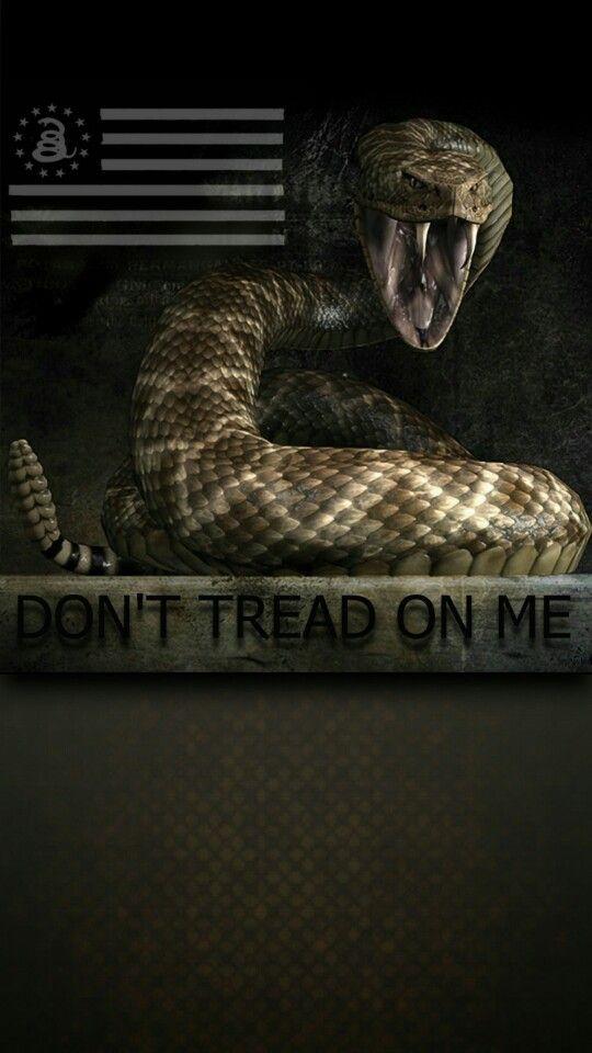 Best 25 crime alert ideas on pinterest kendall jenner for Kendall jenner snake tattoo