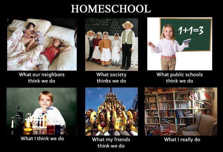 Homeschool Reality :)