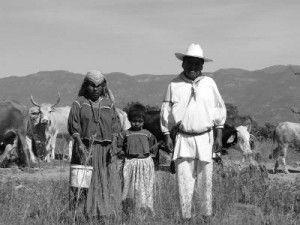 Etnocidio Indígena en tiempos de Peña Nieto