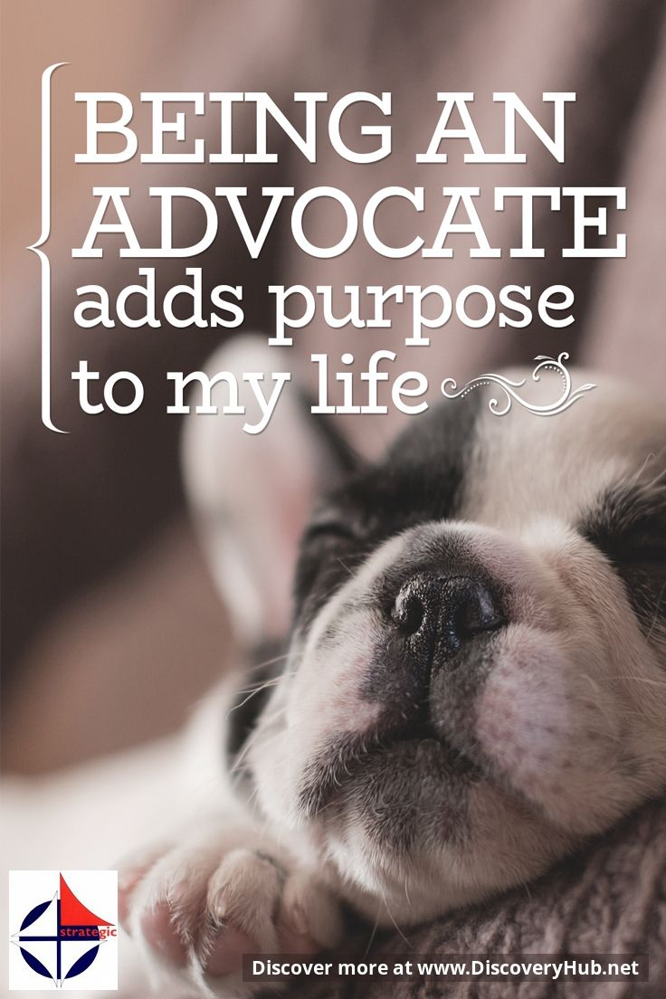 Daily Reflection: Being an Advocate adds purpose to my life ... #FamousQuotes #DailyMotivation #MotivationalQuotes #SelfHelp #InspirationalQuotes #DailyInspiration Please share the inspiration! http://www.HeleneMalmsio.com http://www.free-self-help.com