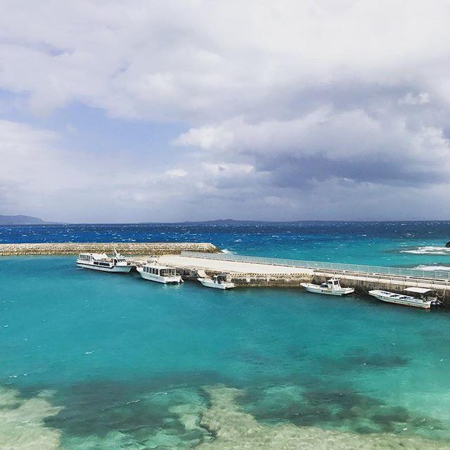【shinobu_miyara】さんのInstagramをピンしています。 《北風10メートル以上吹いてる時化の中、新城島にやってきましたぁ〜⚓️ #沖縄  #新城島 #パナリ島 #民宿宮良 #海 #島 #オプションツアー》