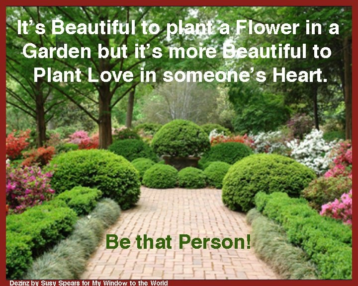 flower garden | Quotes | Pinterest | Gardens, Flower and ...