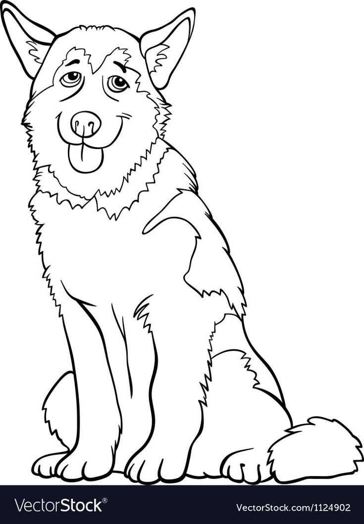 Husky Or Malamute Dog Cartoon For Coloring Vector Image Ad