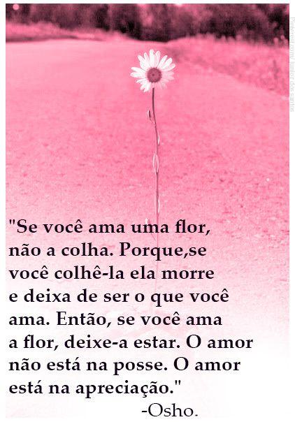 """""""Se você ama uma flor,  não a colha. Porque,se  você colhê-la ela morre  e deixa de ser o que você  ama. Então, se você ama  a flor, deixe-a estar. O amor  não está na posse. O amor  está na apreciação.""""                             -Osho."""