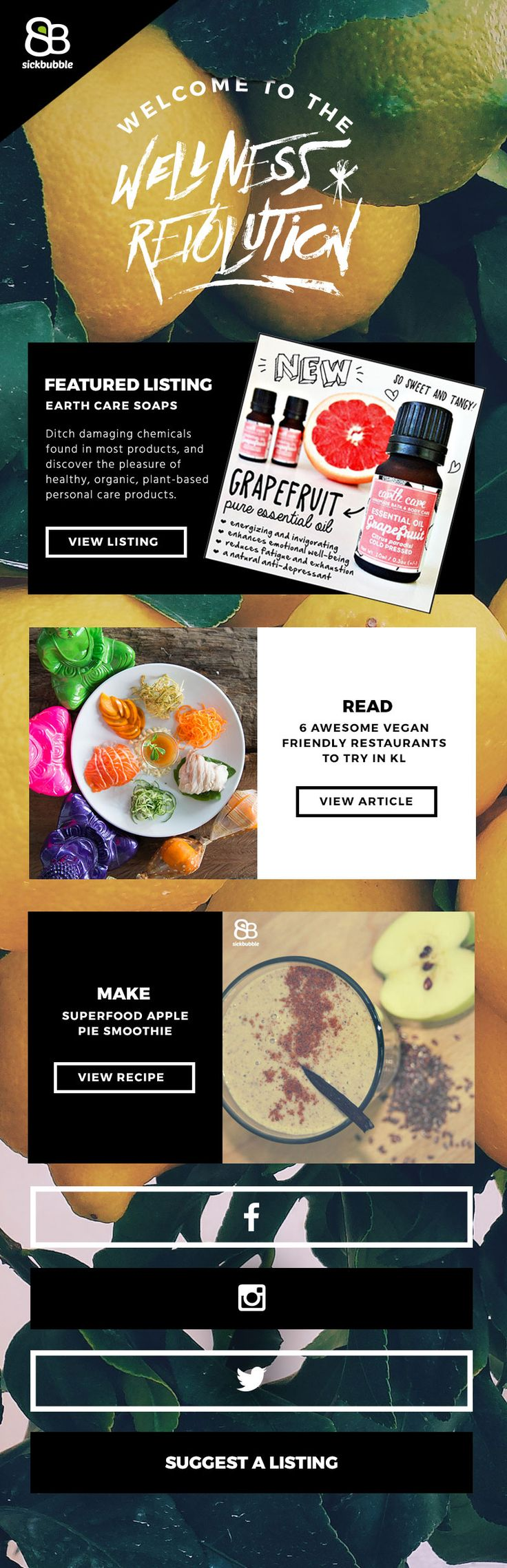 Newsletter / Email Design for Healthy Food and Sustainability Website